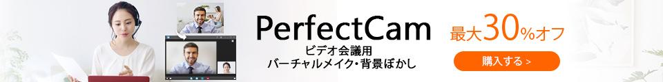 PerfectCamを購入する